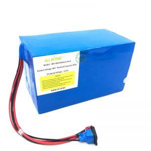 Pacco batteria al litio 18650 48V 40Ah personalizzato per E-bike, E-boat, Scooter elettrico