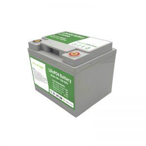 ALL IN ONE 2000 cicli 12V50Ah LiFePO4 Batteria con BMS intelligente per sistema di accumulo di energia domestico